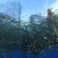 """La """"pesca fantasma"""" destruye silenciosamente los océanos"""