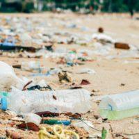 Europa declara la guerra al plástico de un solo uso y a la basura marina