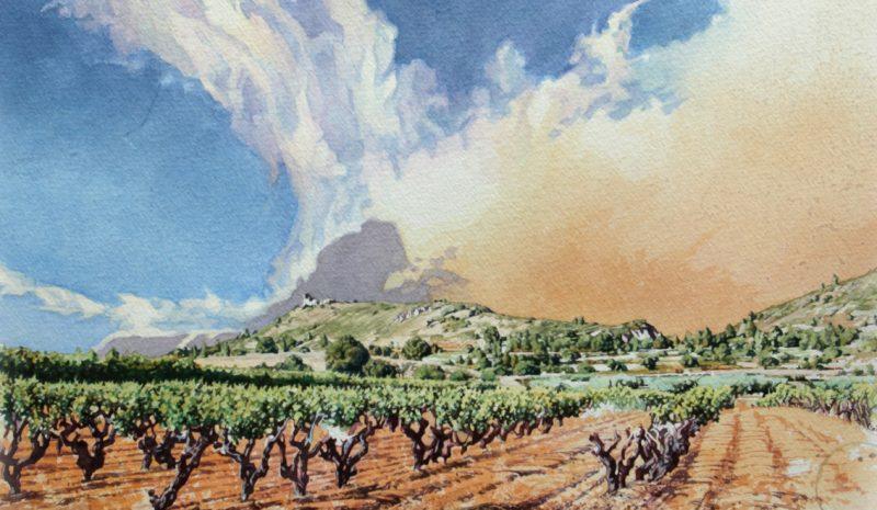 Paisajes del vino, una misión vitivinícola