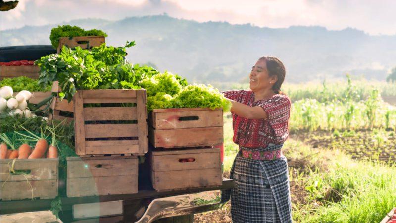 Una agricultura verde y resiliente como solución al cambio climático
