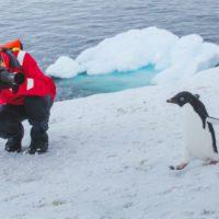 La Antártida, el único lugar (por ahora) libre de covid-19