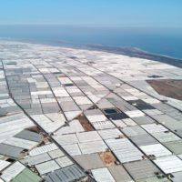Los invernaderos solares mitigan el aumento de las temperaturas