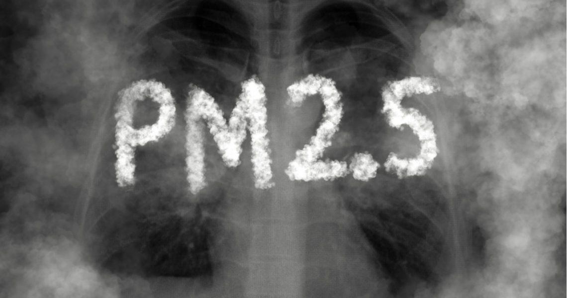 Partículas de contaminación atmosférica: tan pequeñas y lesivas como el coronavirus