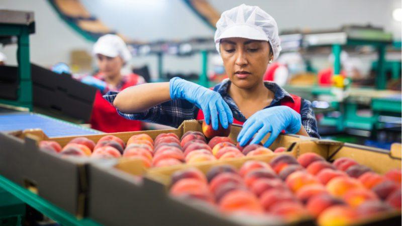 La recuperación laboral en Latinoamérica tras la pandemia será lenta
