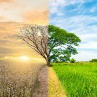 El impacto ambiental da un vuelco al ránking de desarrollo humano de la ONU