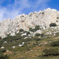 La Sierra de las Nieves por fin es Parque Nacional