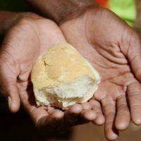 El Banco Mundial de Alimentos teme una 'pandemia de hambre'