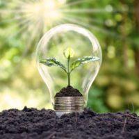10 claves para afrontar 2021 apostando por un mundo más verde
