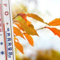 Un otoño cálido y seco cierra una década de récords de temperatura