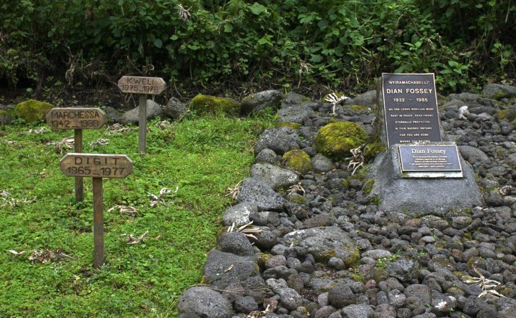 Epitafio sobre la tumba de Dian Fossey ,en las montañas Virunga de Ruanda, en su campamento y junto algunos de sus amados gorilas erwin