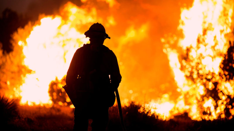 Héroes forestales contra el fuego, más necesarios que nunca