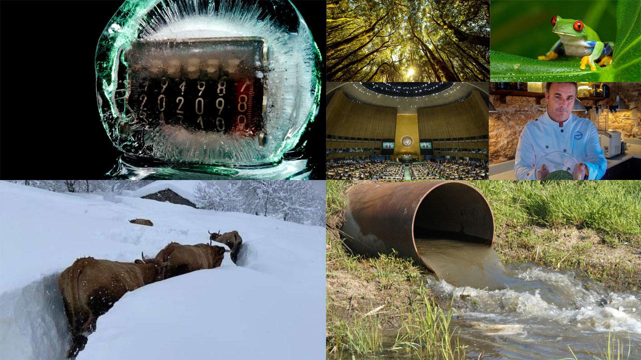 """Cómo """"abrigar"""" el contador del agua para evitar incidentes por congelación"""
