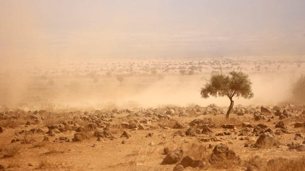 sequías