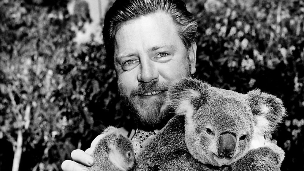 El naturalista y escritor británico Gerald Durrell, posando con un koala australiano.   FOTO: BCC