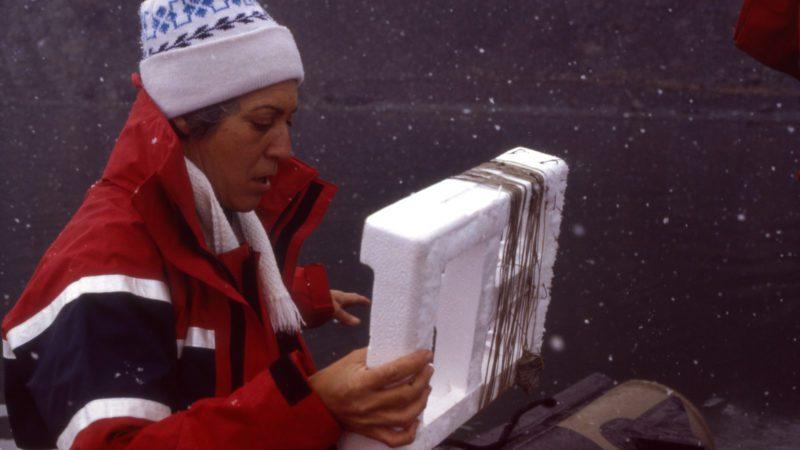 Josefina Castellví, el camino en femenino de la investigación <br>en la Antártida
