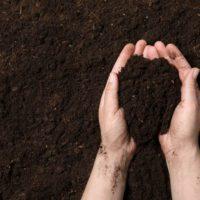 No solo es la atmósfera; la solución está en el suelo y su biodiversidad