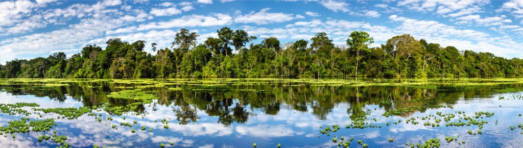 El río Amazonas, gran afluente inicial del Amazonas, a su paso por la reserva de Pacaya-Samiria, en Perú.   FOTO: Guillus