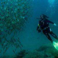 Oceánicas, un proyecto que si no existiera, habría que crearlo