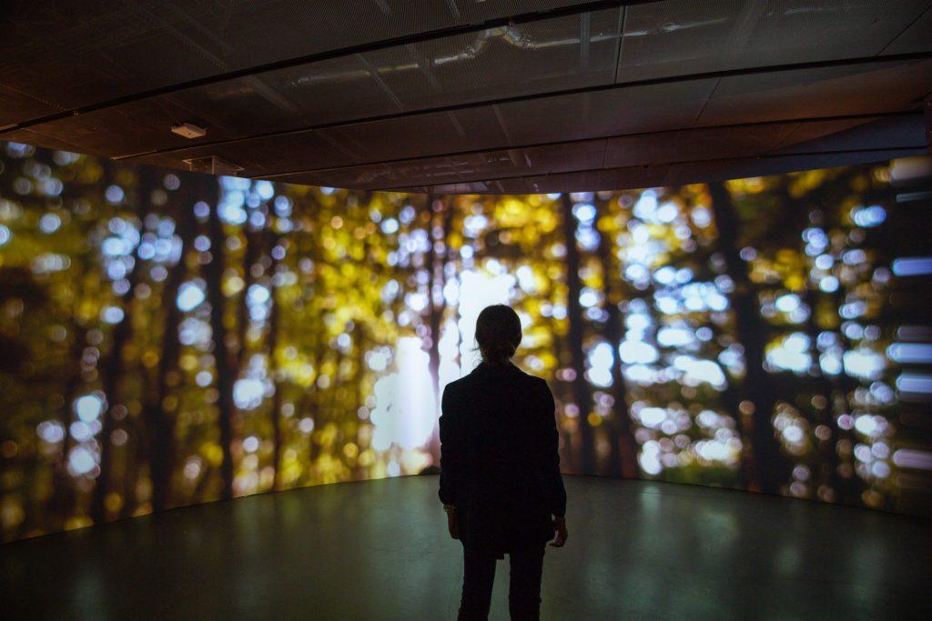 Hambach Forest and the Technological Sublime, de Joanie Lemercier, instalación que puede contemplarse hasta julio de 2021 en la Espacio Fundación Telefónica, de Madrid.