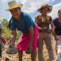 Crisis climática y COVID cuadruplican el hambre en Centroamérica