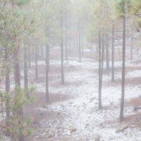 Tenerife registra la temperatura más baja de todo el país y el máximo de lluvia