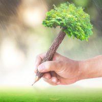 La acción climática domina la cobertura informativa sobre ODS en España