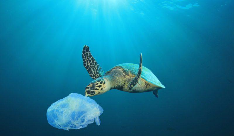 España pide un pacto global frente a la contaminación marina por plásticos