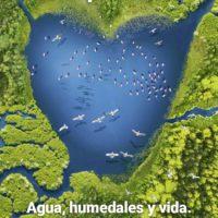 Ramsar, medio siglo del gran acuerdo internacional para la protección de los humedales