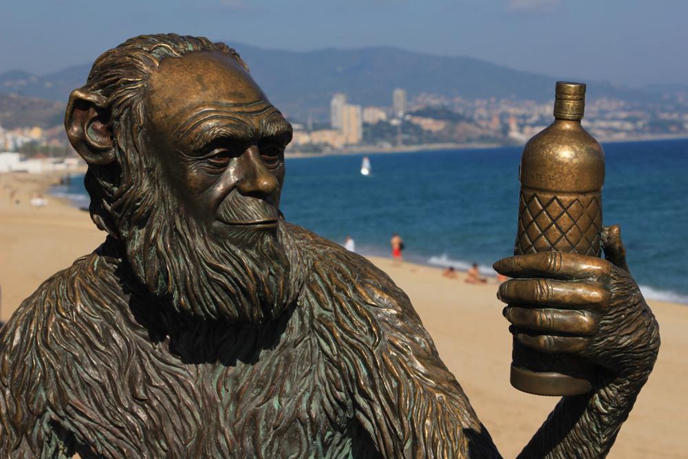 Estatua instalada en el año 2012 en Badalona y obra de la escultora Susana Ruiz, que celebra la alusión a Darwin que la etiqueta de Anís del Mono hace al famoso naturalista desde el año 1870 en todas sus botellas