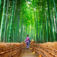 Resucitar el Protocolo de Kioto podría ser la solución
