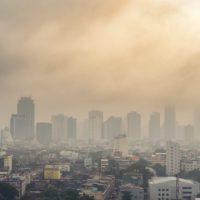 Alianzas, la clave para ganar la batalla a la contaminación