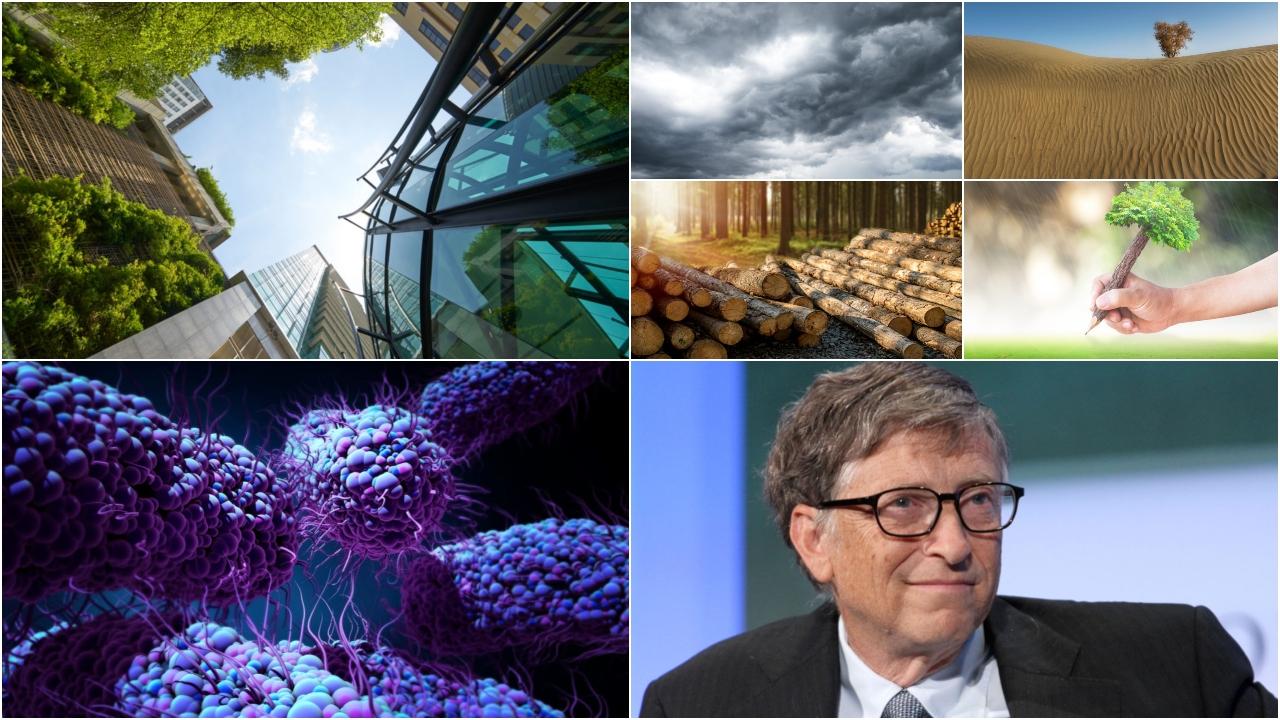Finanzas y sostenibilidad, una alianza vital para nuestro futuro