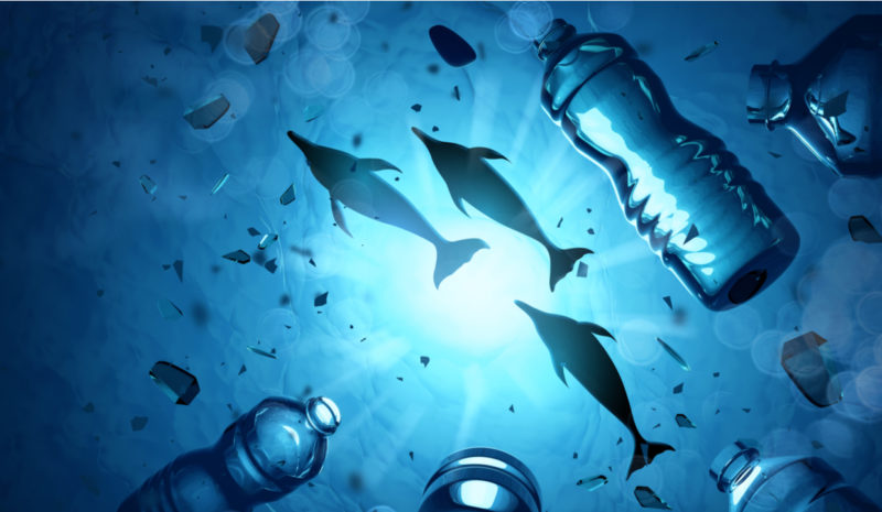 Latinoamérica se suma a la lucha mundial contra la basura marina