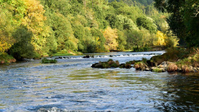 Reinventar la naturaleza para asegurar el suministro de agua en las ciudades