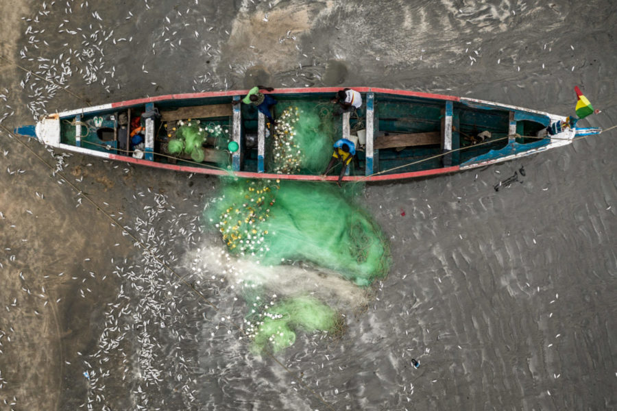 Pescadores locales de Gambia lanzando sus redes. | FOTO: The Outlaw Ocean Project Fábio Nascimento