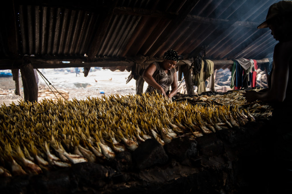 Un mercado de pescado al aire libre en Gambia. | FOTO: The Outlaw Ocean Project Fábio Nascimento