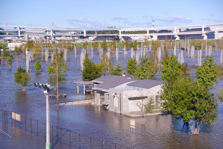 Impacto del tifón Hagibis en Japón, próxima sede los Juegos Olímpicos FOTO Kathy Matsumami