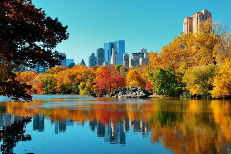 Una estampa otoñal de Central Park.   FOTO: Songquan Deng