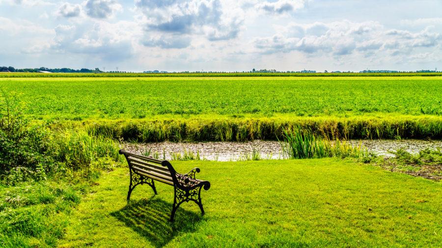 Típico paisaje de polder junto a la localidad de Midden Beemster, en Holanda. | FOTO: Harry Beugelink