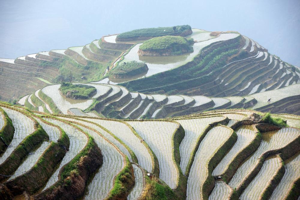 Terrazas de arroz Longji provincia de Guangxi China