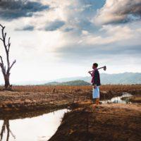 La agricultura es la más castigada por los desastres naturales