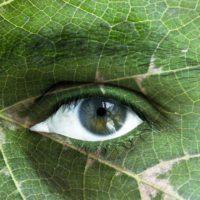 Avanza el plan mundial para vivir en armonía con la naturaleza