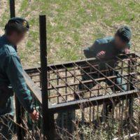 El Seprona localizó en 2020 1.200 métodos de caza prohibidos