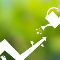 La ONU lanza una herramienta para integrar medio ambiente y economía