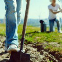 """La falta de inversión """"verde"""" amenaza la recuperación sostenible"""