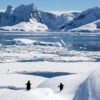 Las amenazas persisten en la Antártida 30 años después del Acuerdo de Madrid