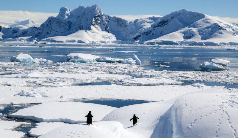 El Tratado de Madrid que protege la Antártida cumple 30 años