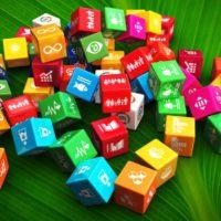 ODS, la mejor hoja de ruta para la recuperación post-covid