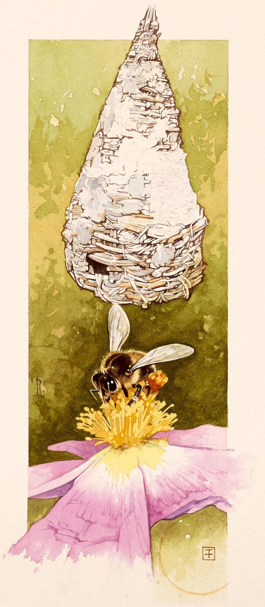 Portada del libro 'El País del Abeyeiro', realizada por Fernando Fueyo.