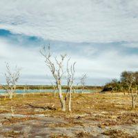 La humanidad demanda el 173% de la biocapacidad de la Tierra